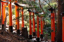 Uutta sisältöä: Japani-aiheet Riisa.netin alle
