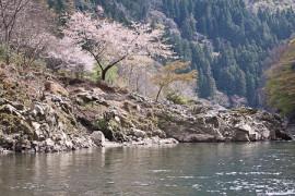 Arashiyamalla Hozugawan koskea laskemassa