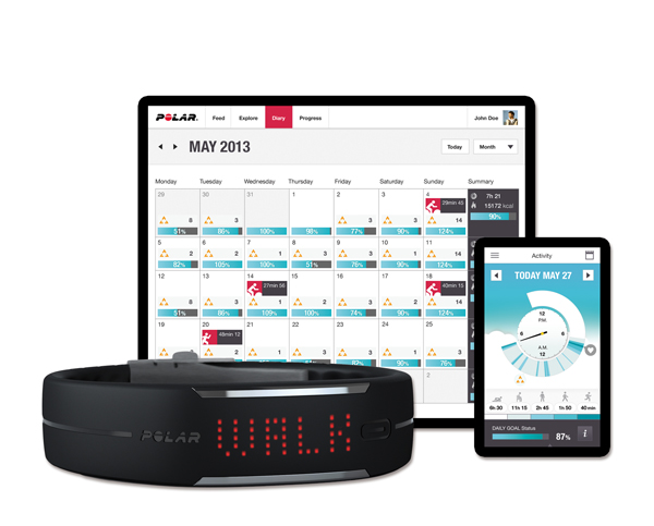 polar-Activity_measurement_system