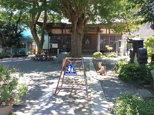 miura-yogashima-6