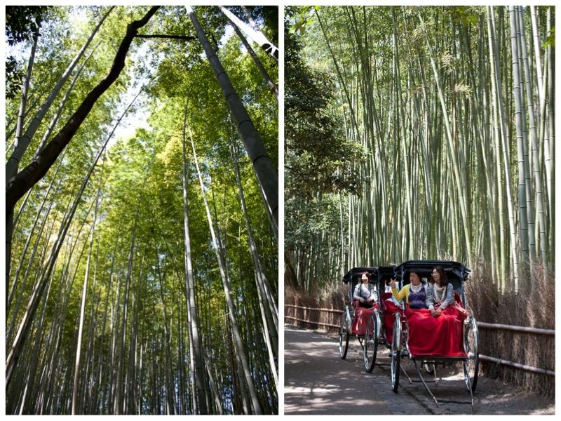arashiyama-bambumetsa